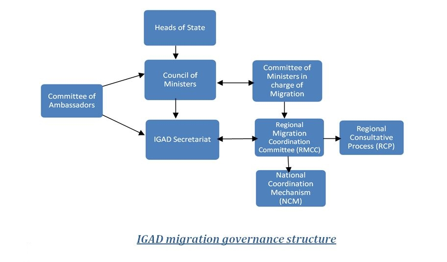 igad-migration-organogram